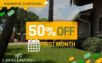 50% Off First Month of Lawn Care