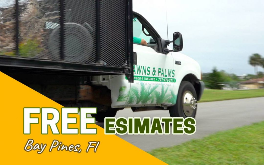 Landscape Maintenance and Lawn Care for Bay Pines, FL
