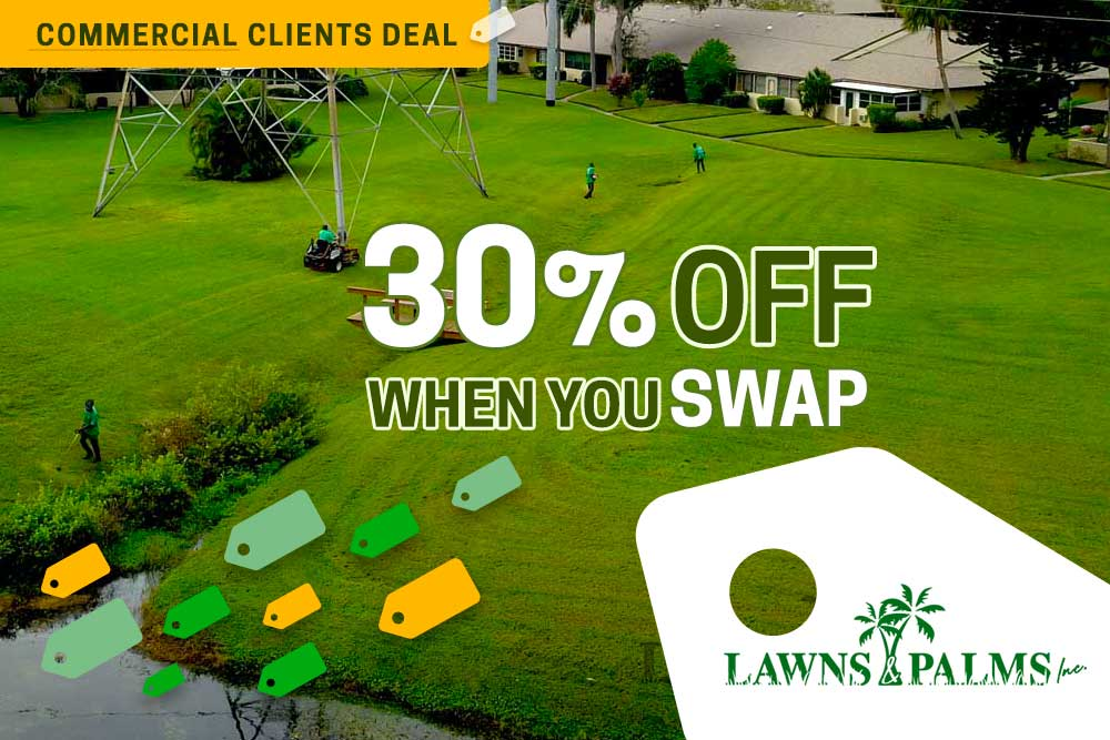 Clearwater Landscaping Discount