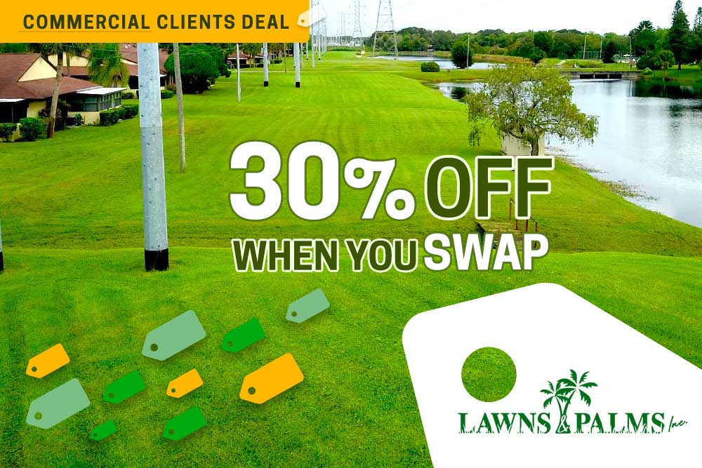 Pinellas Park Commercial Landscaping Discount