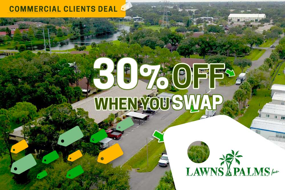 Largo, FL Lawn Care and Landscaping Special