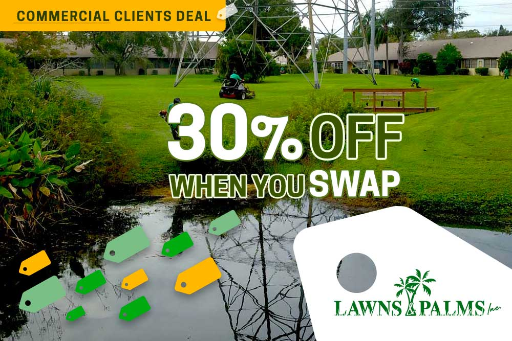 Pinellas County Condos to Business Complexes, Switch to Lawns and Palms and SAVE