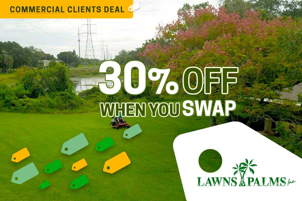 This Discount for Treasure Island, Fl Lawn Care is Gold