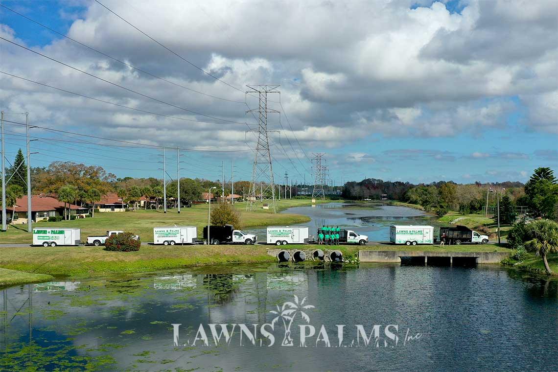 Professional Landscape and Lawn Care Company