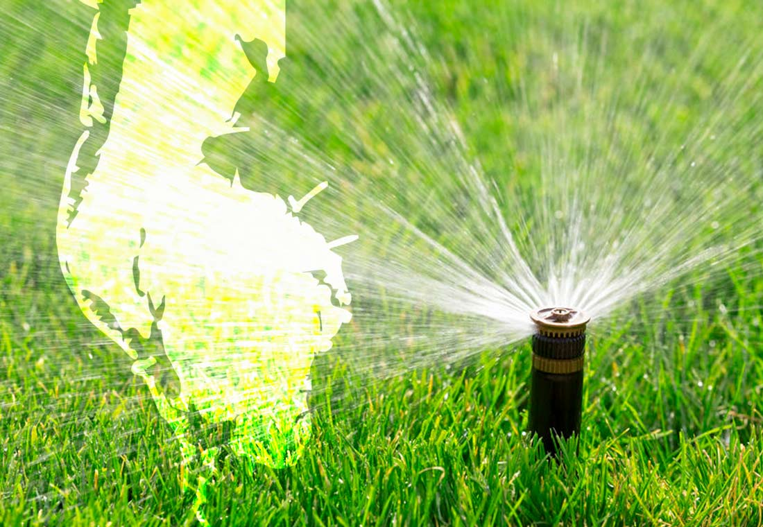 Lawn Irrigation in Pinellas and Largo for best health of grass and sod.