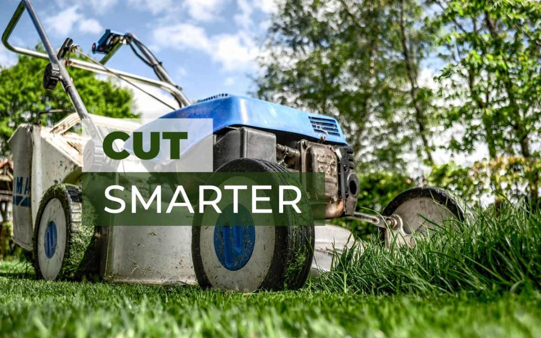 Tips for Cutting Your Grass and Get the Best Results