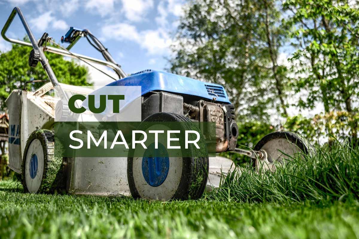 Cut Your Lawn Grass Smarter