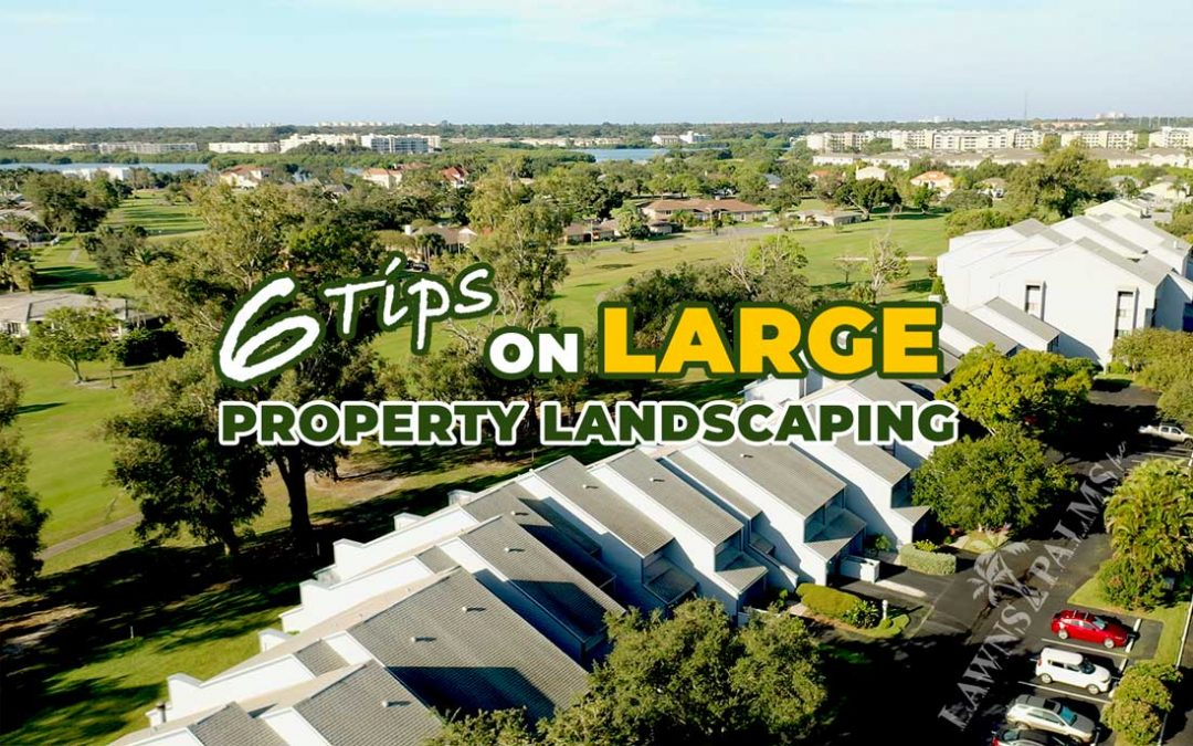 6 Tips For Better Commercial Property Landscaping